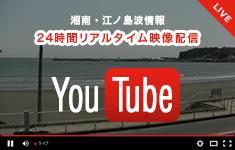 波情報 動画配信
