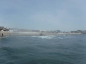 波乗ってますね!!波の高さは膝上。皆さん楽しんでましたね!